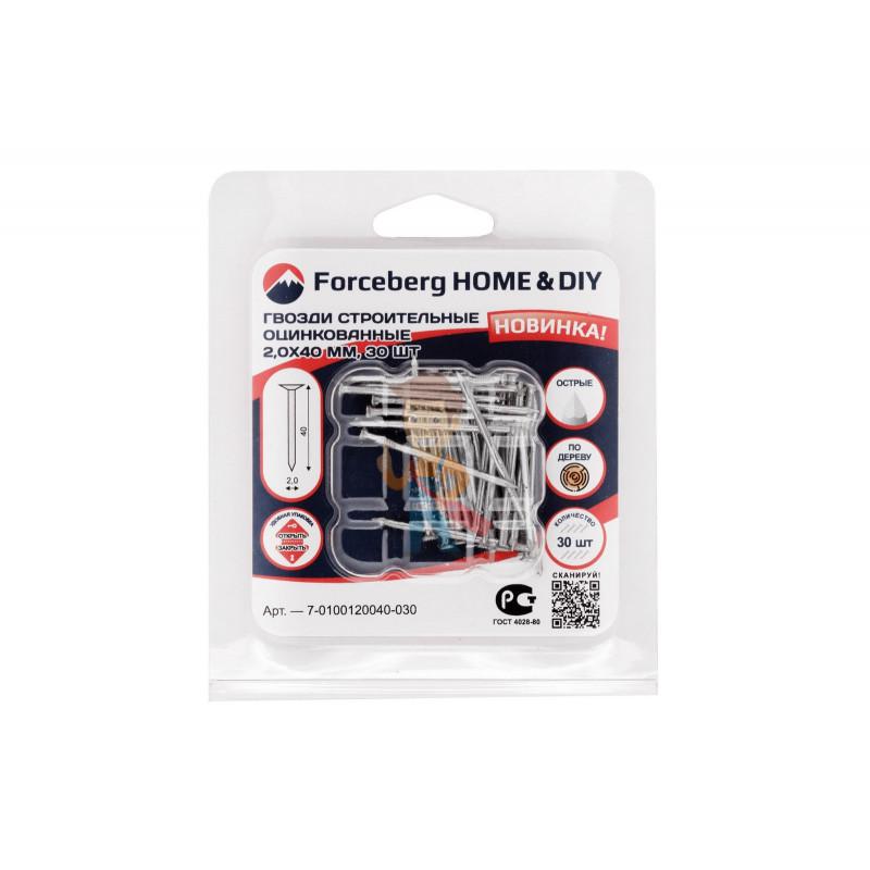 Гвозди строительные оцинкованные по дереву Forceberg Home&DIY 2,0х40 мм, 30 шт - фото 3
